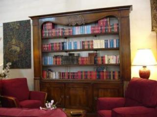 Fabrication de style : création d'une grande bibliothèque à Paris