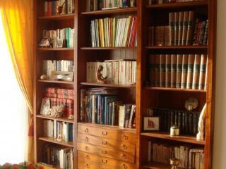 Les étagères réglables permettent de régler au mieux selon la hauteur de vos livres.